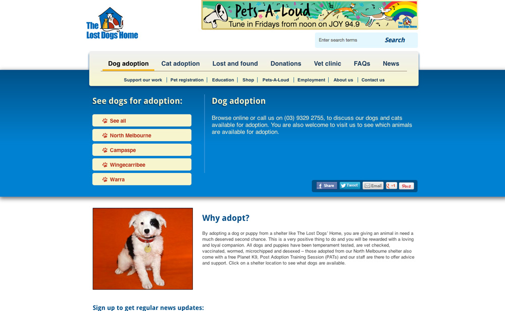 The Lost Dogs' Home dog adoption information page