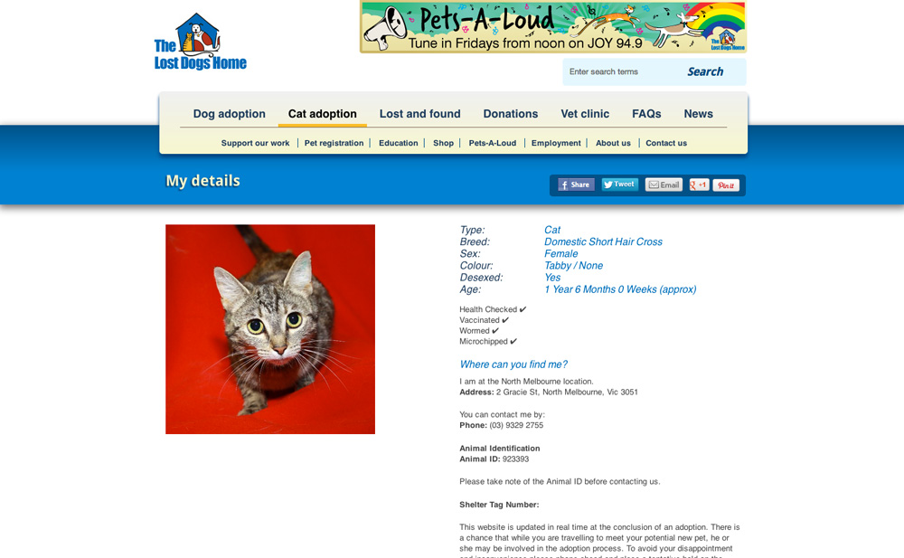 The Lost Dogs' Home cat information